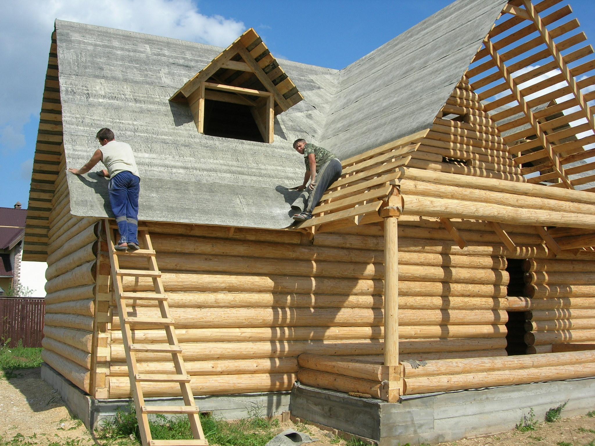 Виды и свойства древесины, используемой в. Виды древесины, используемой при строительстве деревянных домов